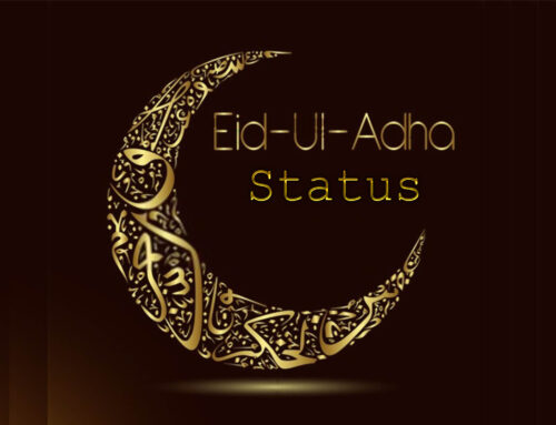 Eid ul Adha Status – Facebook and Whatsapp 2020 Status