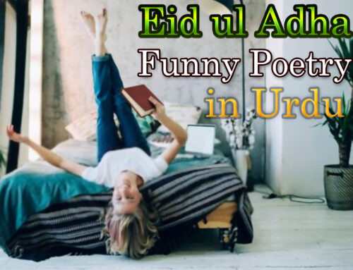Eid ul Adha Funny Poetry in Urdu